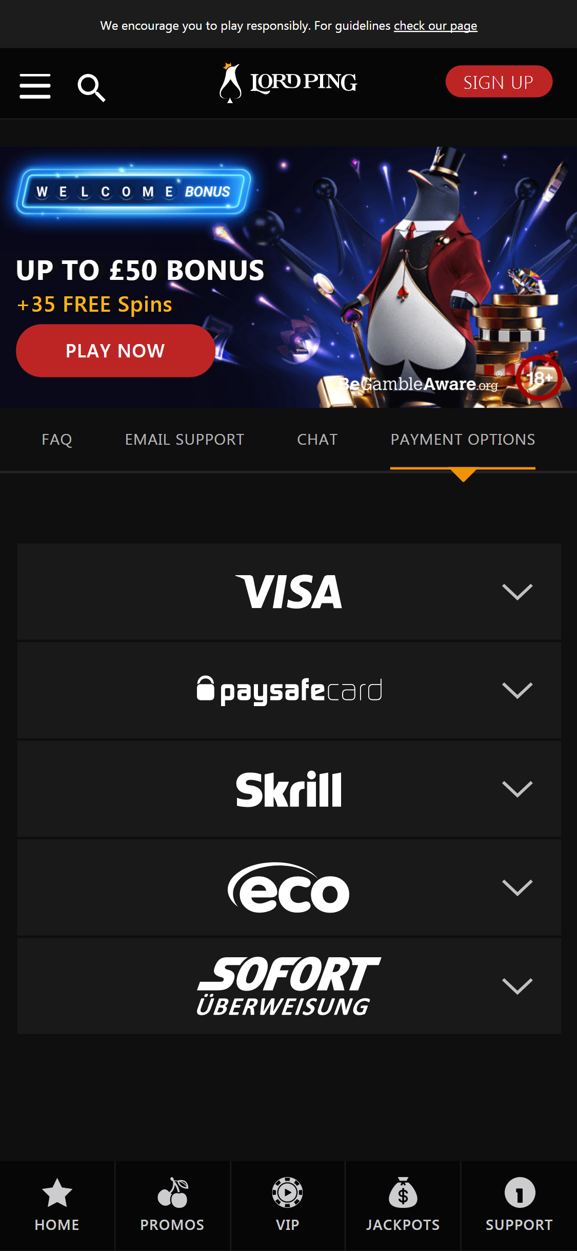 Lord Ping Casino Payment Methods