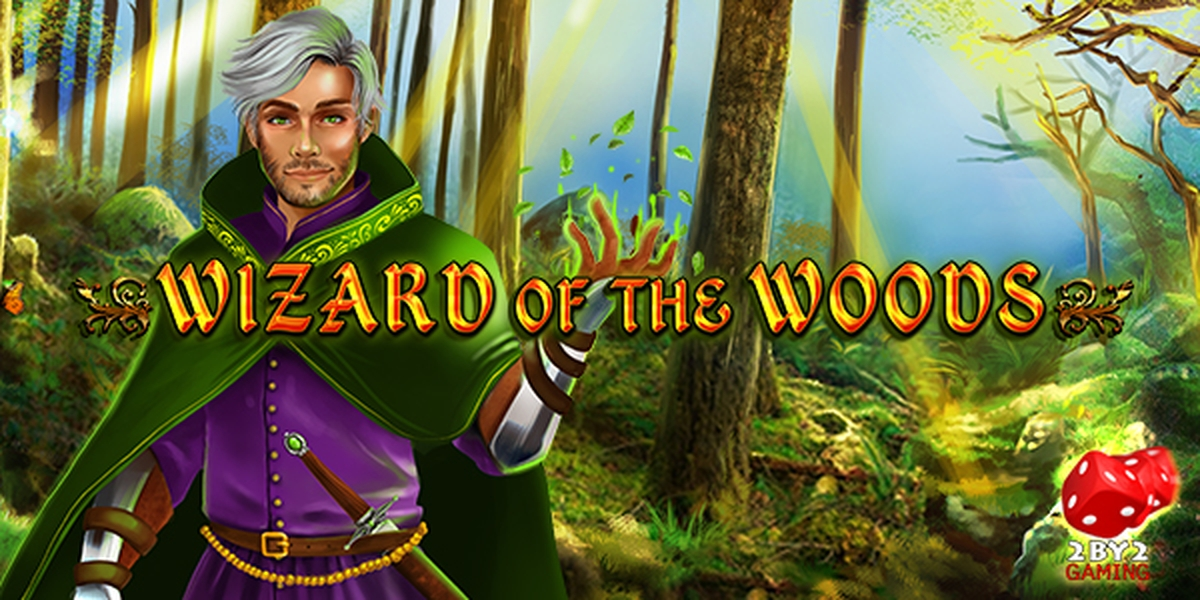 The Wizard of the Woods Online Slot Demo Game by 2 By 2 Gaming
