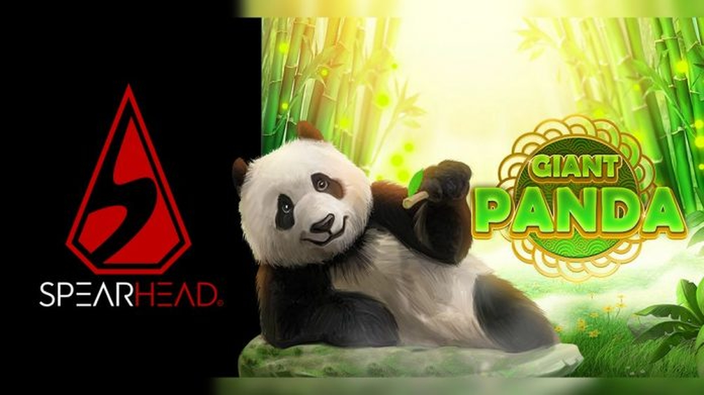 The Giant Panda Online Slot Demo Game by Spearhead Studios