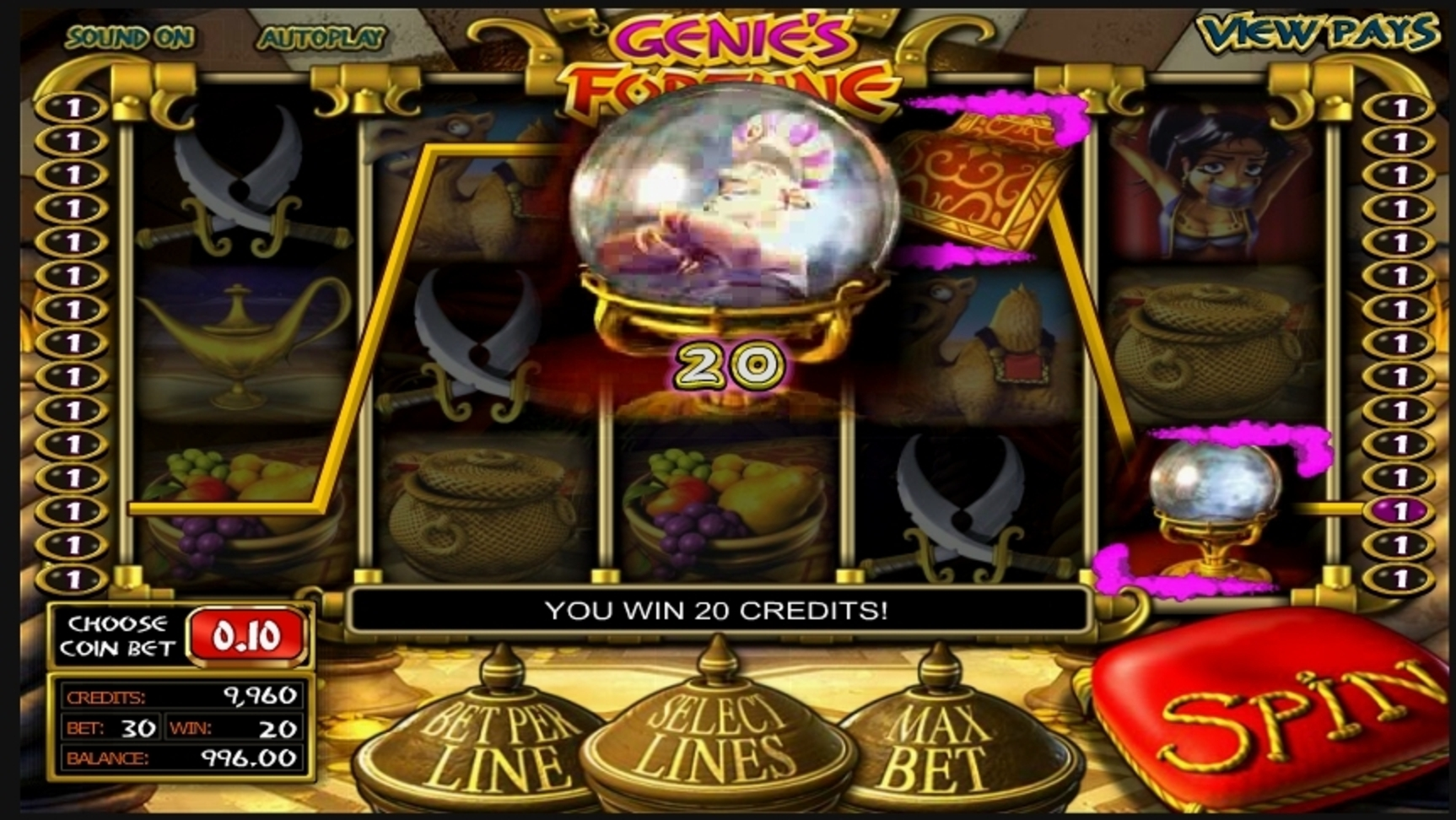Win Money in Genie's Fortune Free Slot Game by Betsoft