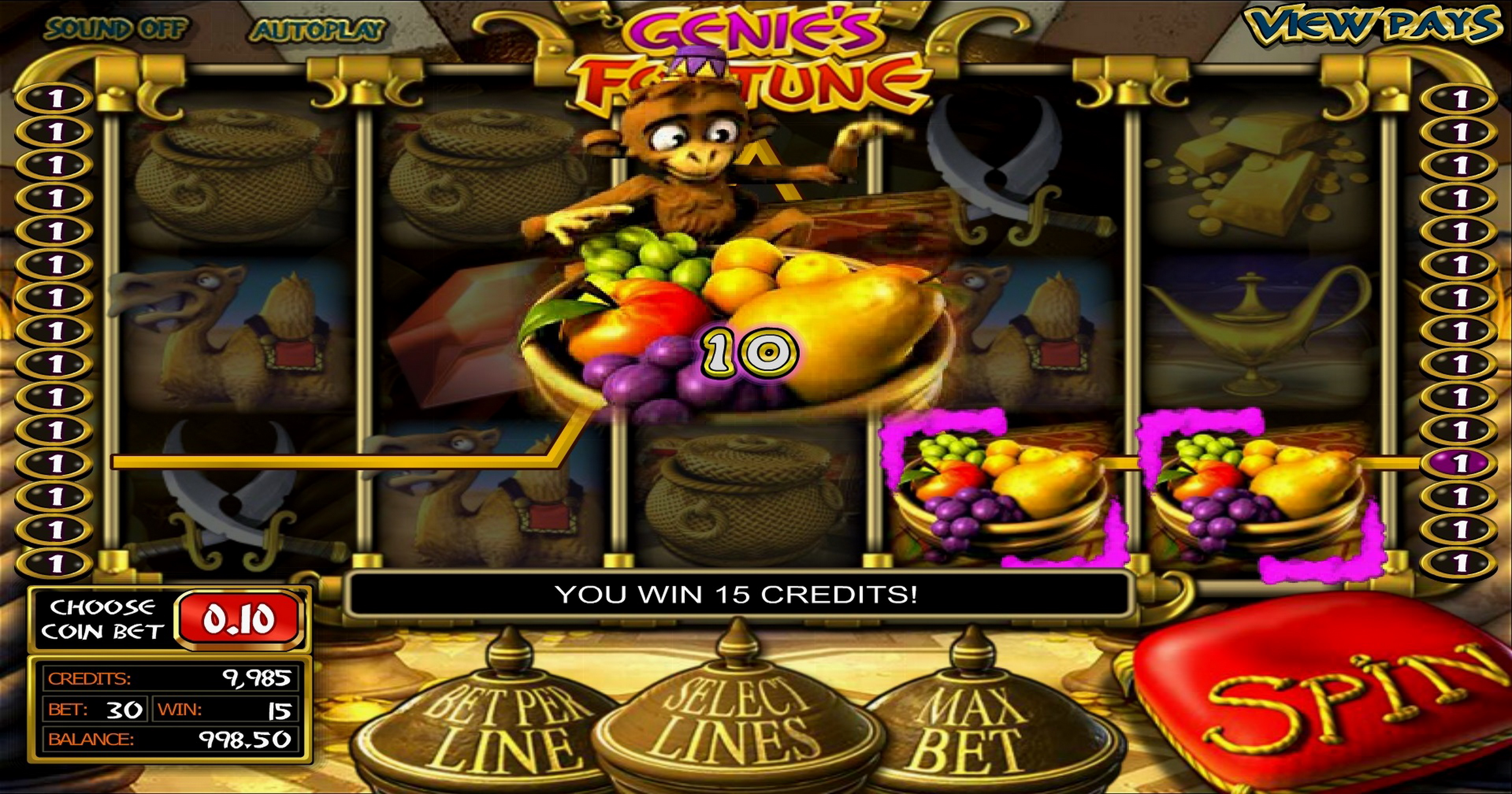 Win Money in Three Wishes Free Slot Game by Betsoft