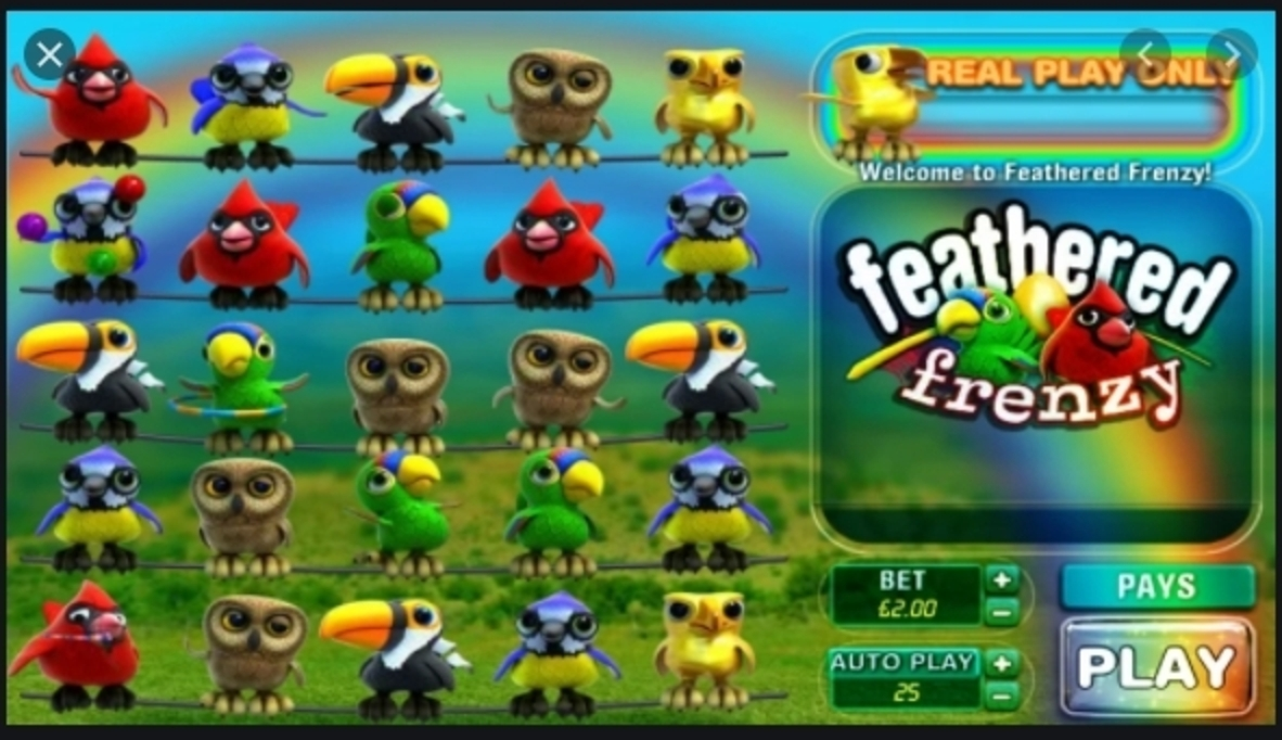 Feathered Frenzy Online Slot Demo Game by Big Time Gaming
