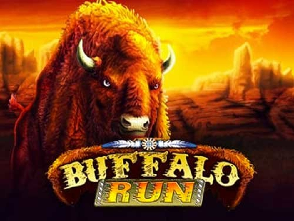 The Buffalo Run Online Slot Demo Game by GMW