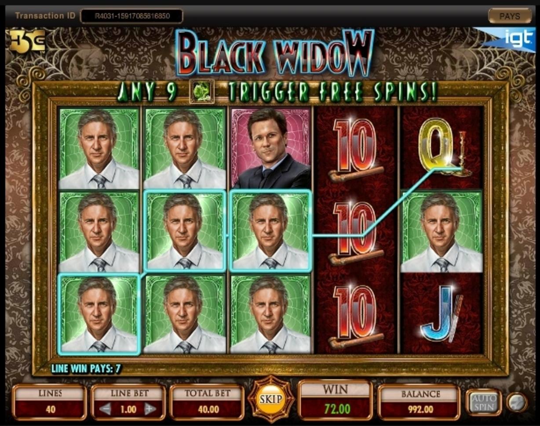 Igt Black Widow Slot Machine