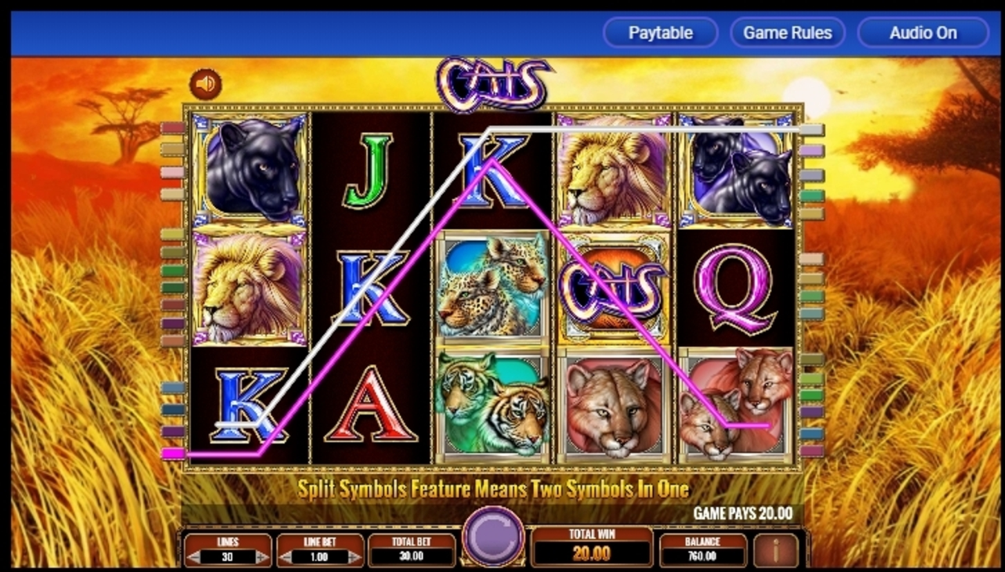 Win Money in Cats Free Slot Game by IGT