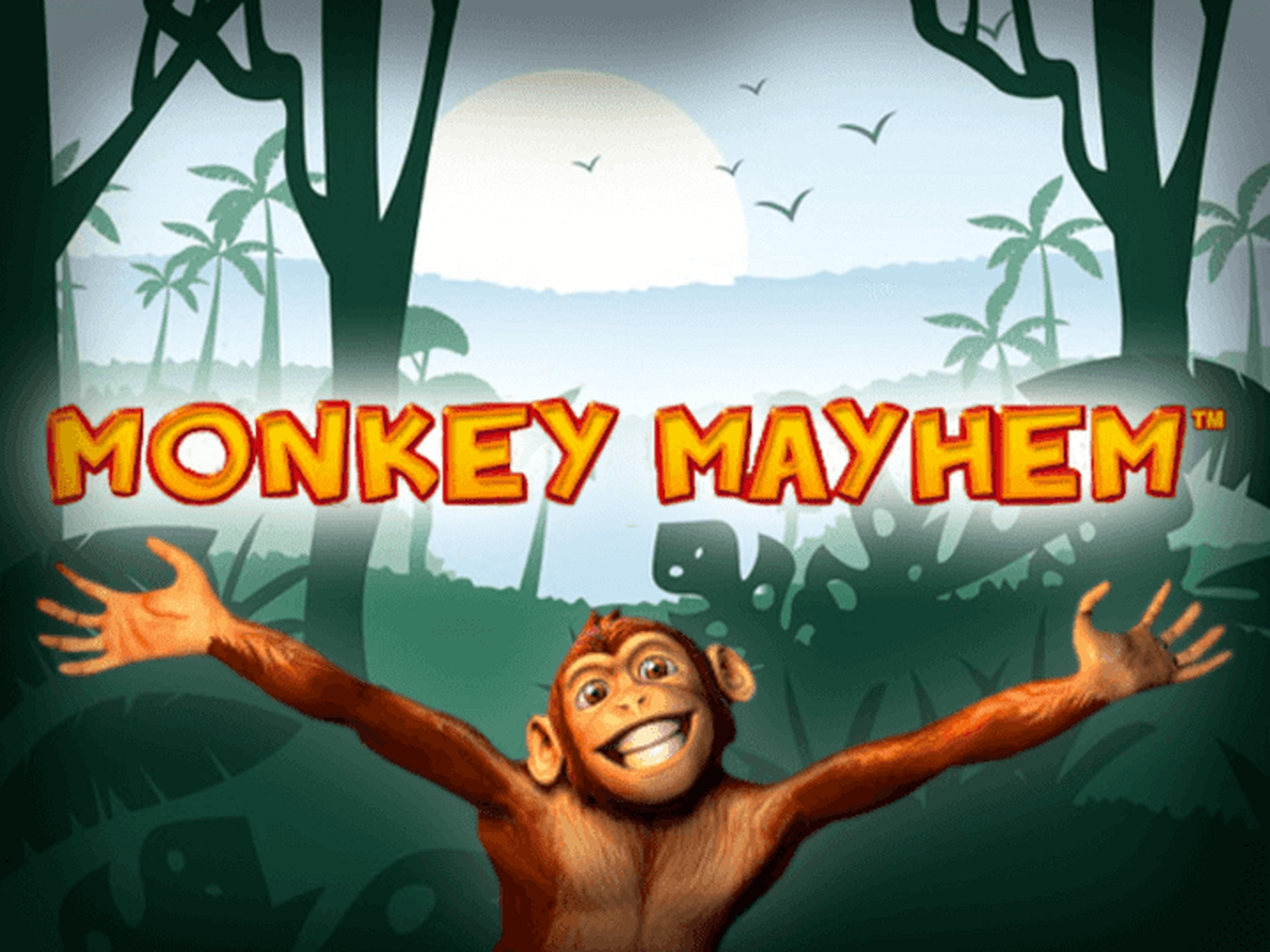 The Monkey Mayhem Online Slot Demo Game by Merkur Gaming