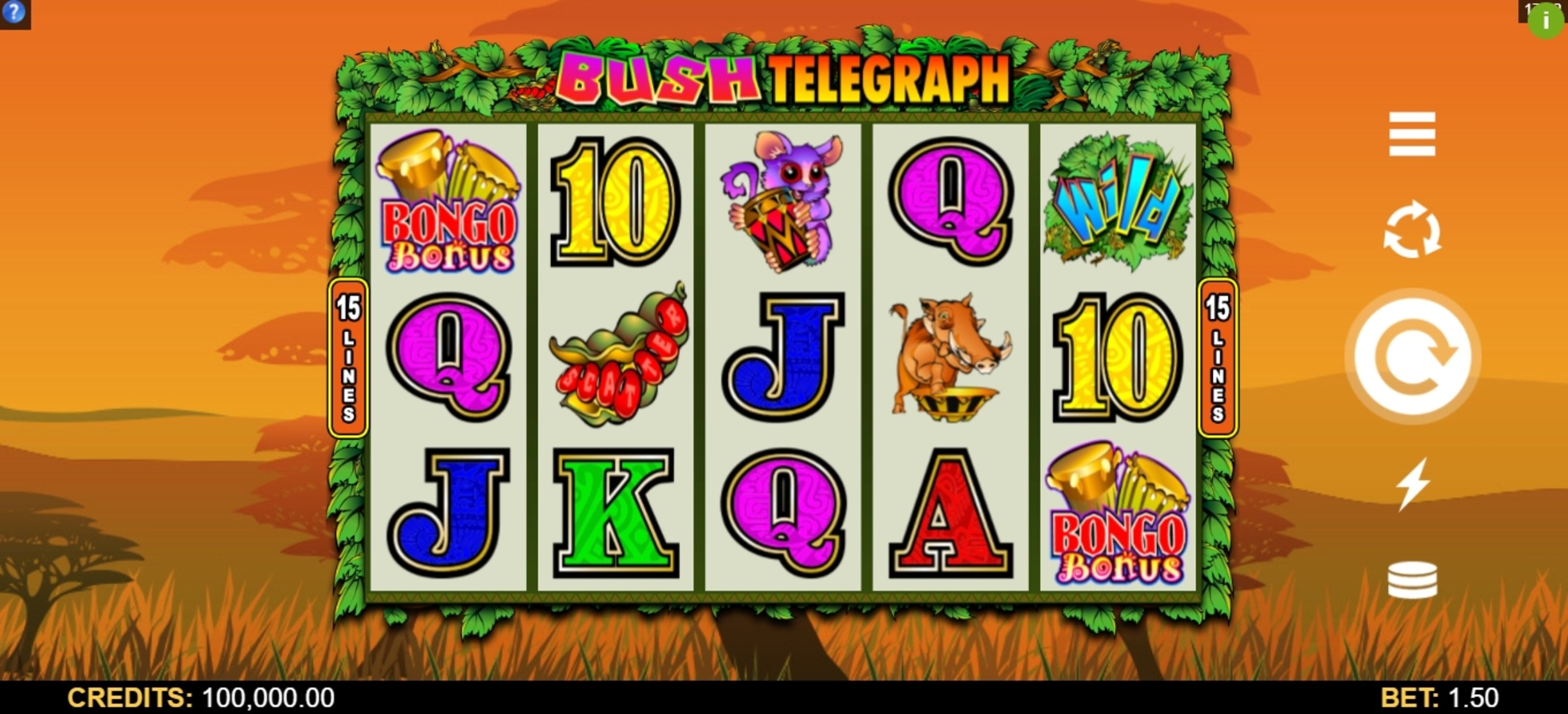 Reels in Bush Telegraph Slot Game by Microgaming