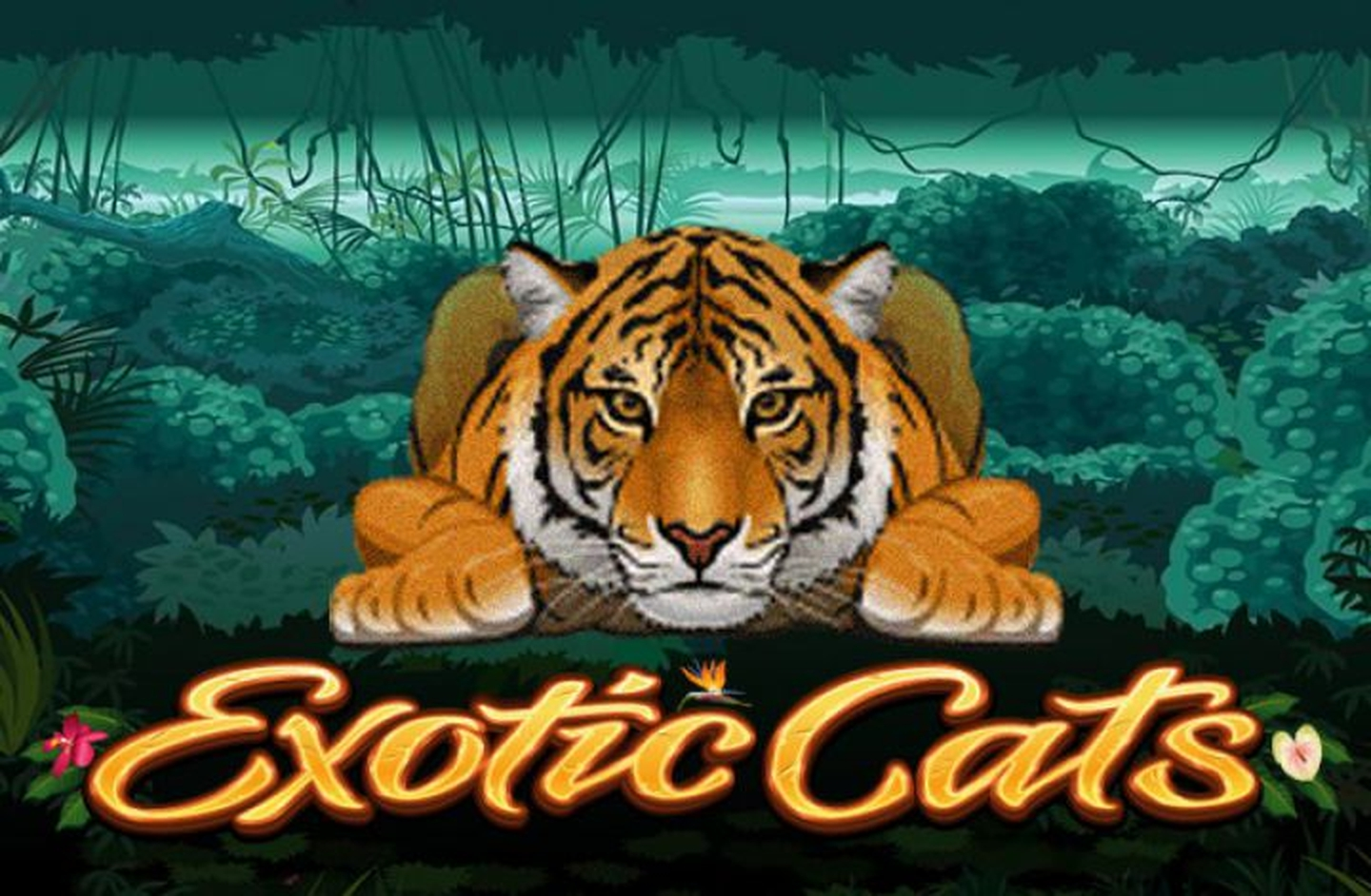 The Exotic Cats Online Slot Demo Game by Microgaming
