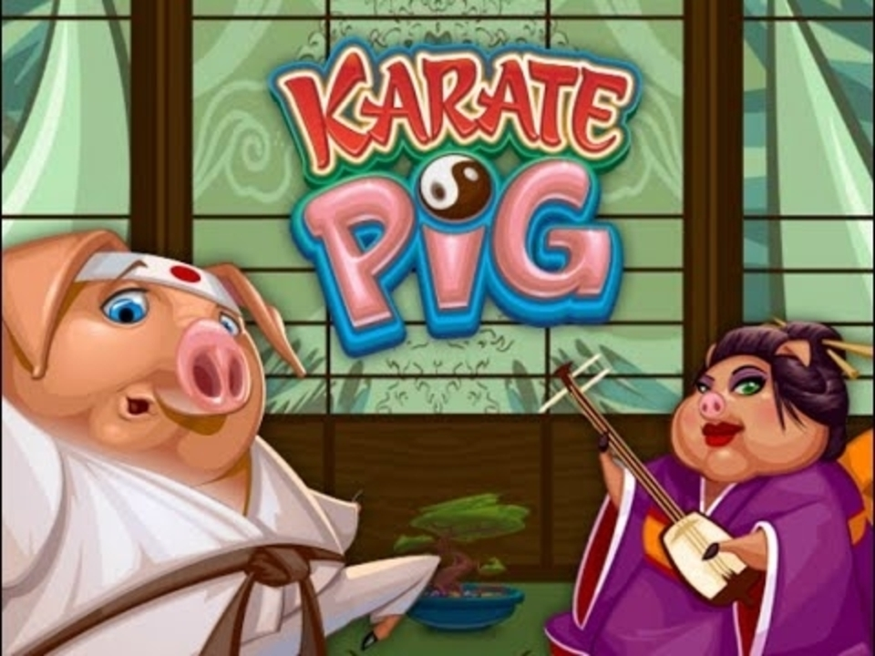 Karate Pig Online Slot Demo Game by Microgaming