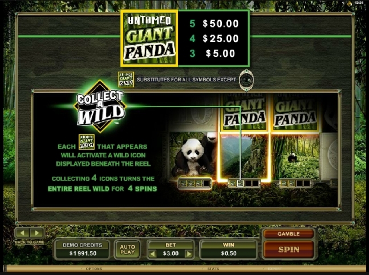 Info of Untamed Giant Panda Slot Game by Microgaming
