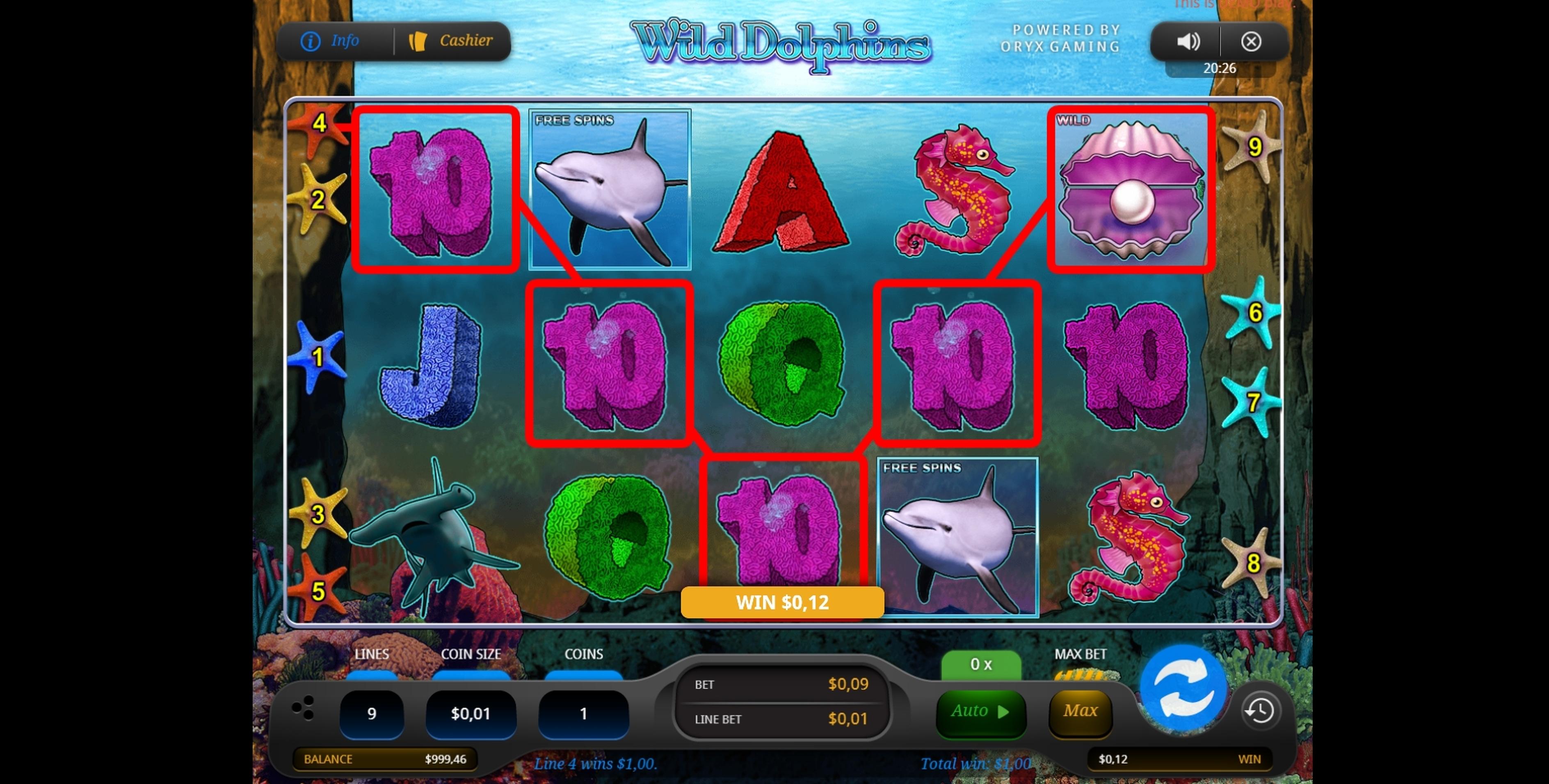 Wild Dolphin Slot Machine