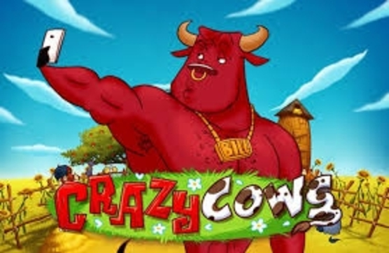 Crazy Cows Online Slot Demo Game by Playn GO