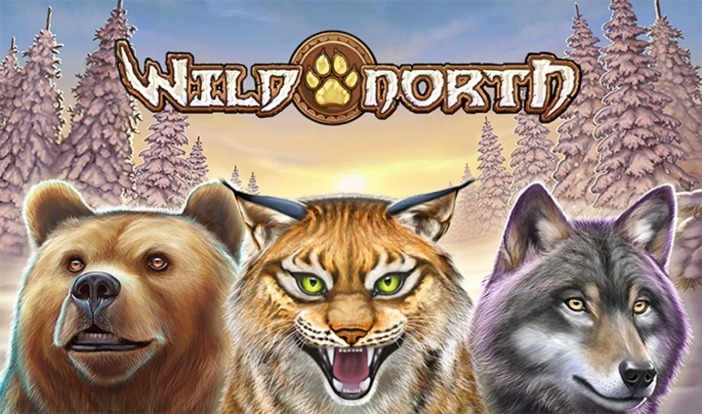 Wild North Online Slot Demo Game by Playn GO