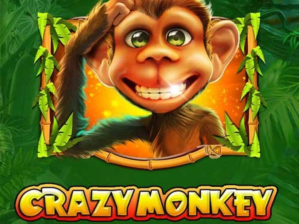 Crazy Jungle For Free Online With No Download!