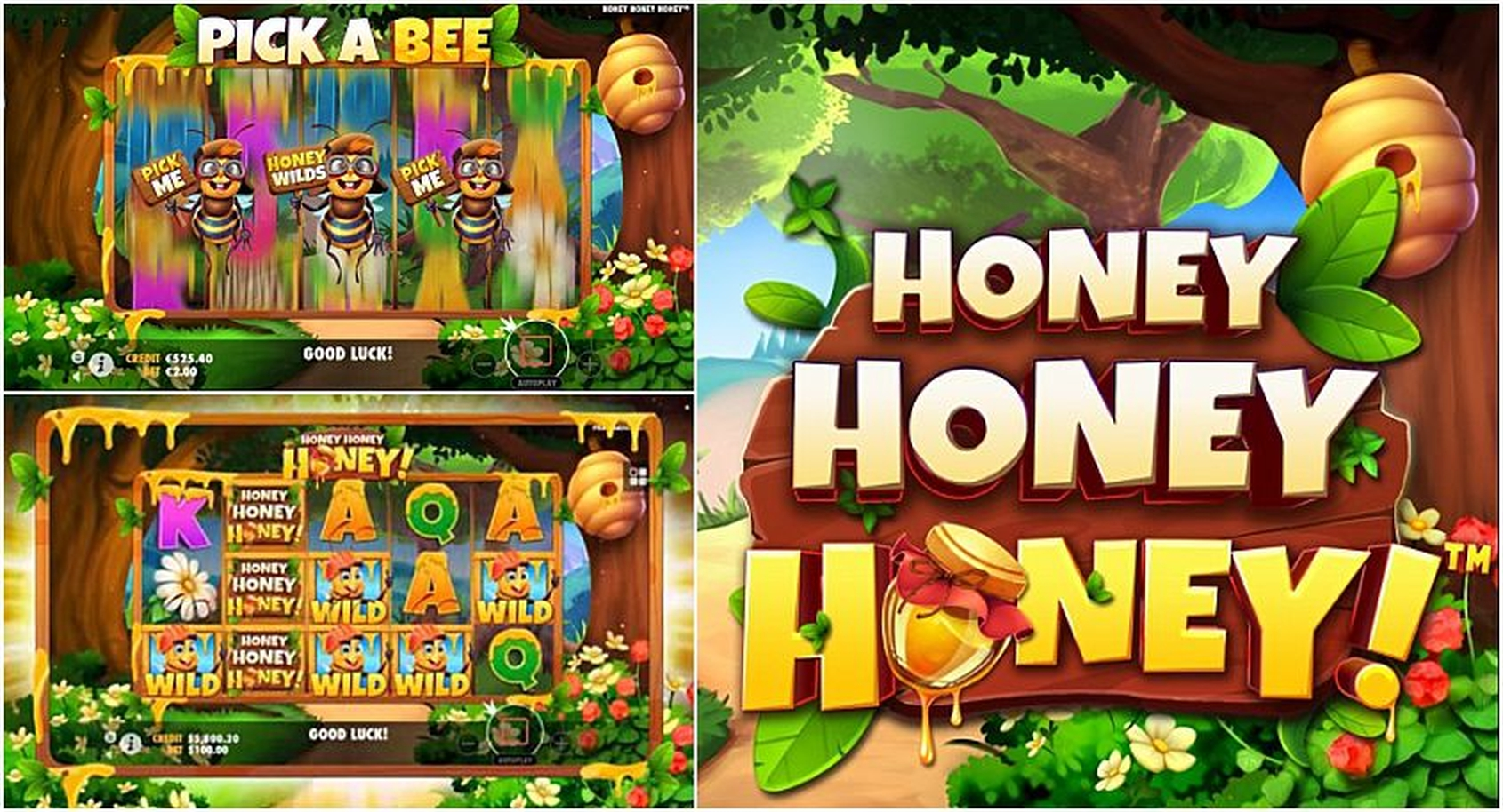 Honey Money (Spin Games) Online Slot Demo Game by Spin Games