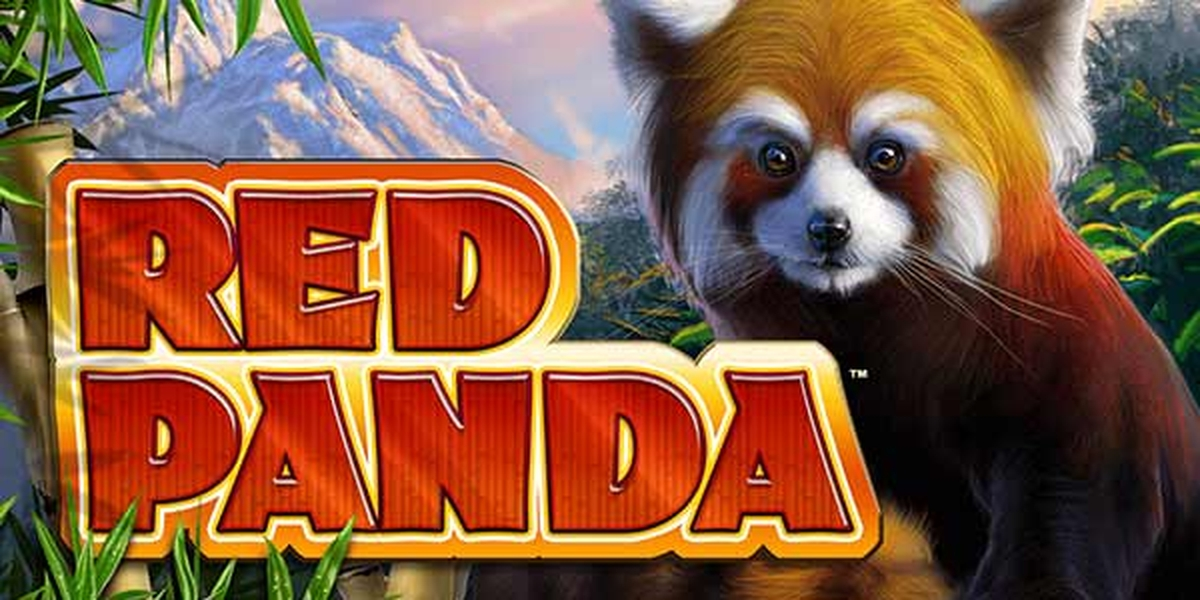 Red Panda (Spin Games) Online Slot Demo Game by Spin Games